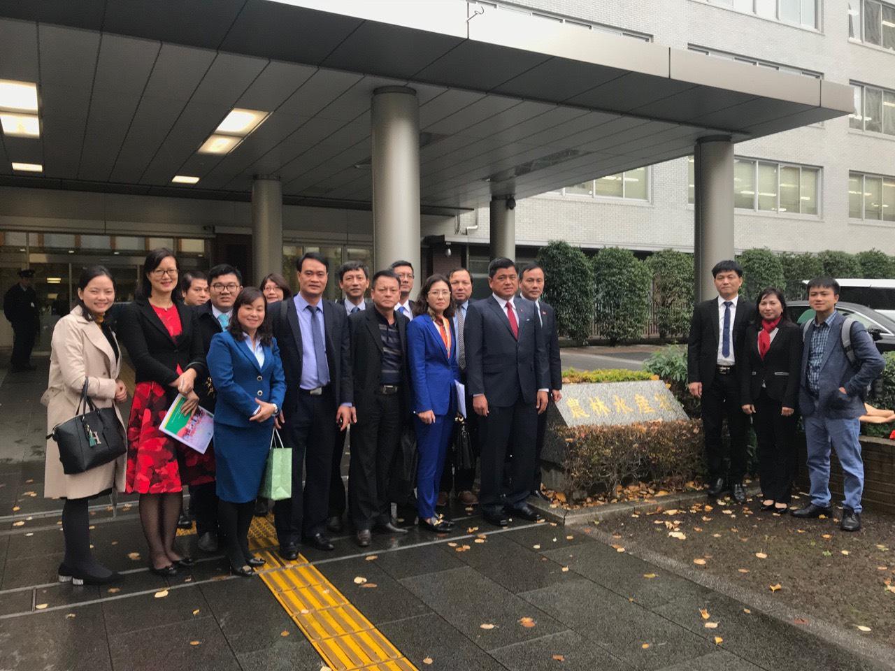 Giám đốc Đối Ngoại Tín Phát tháp tùng phái đoàn Bộ Nông nghiệp Việt Nam sang làm việc với Bộ Nông Lâm Thủy sản Nhật Bản