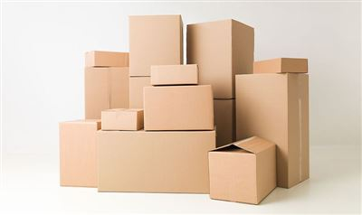 Gia công thùng carton - cho Nữ