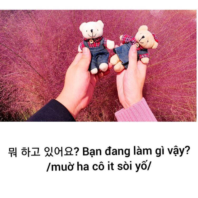 Những câu giao tiếp đối với người mới quen trong tiếng Hàn
