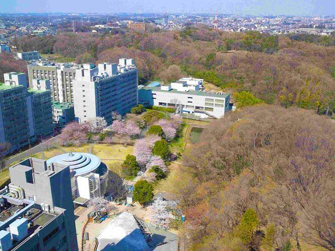 Viện công nghệ Tokyo - niềm mơ ước của nhiều học sinh yêu công nghệ